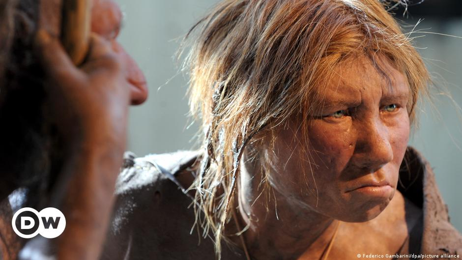 Neanderthal fossils found near Rome    News from science to improve the quality of life    DW