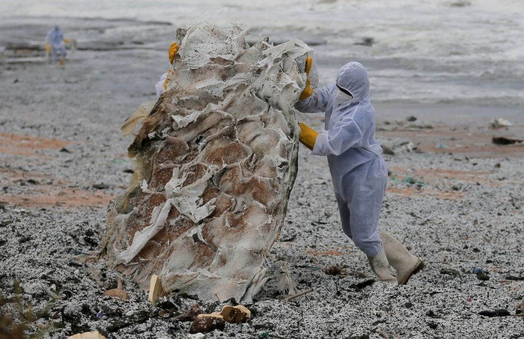Sri Lanka's beaches are threatened by the largest environmental disaster in its history |  Scientist