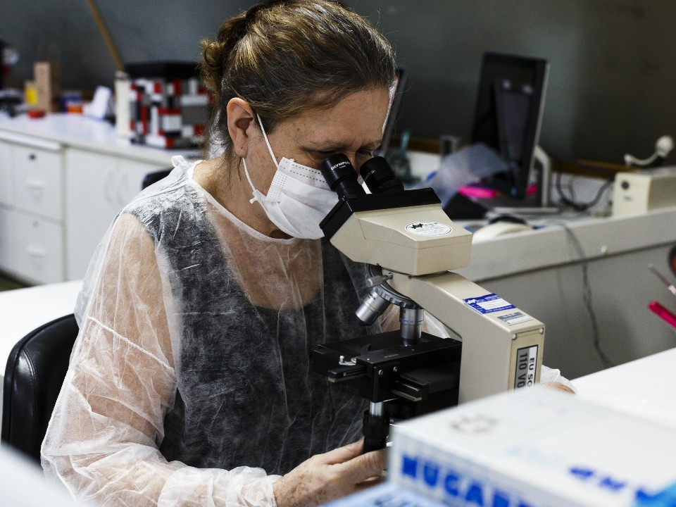 With official funding cut off, researchers struggled to study science in Brazil