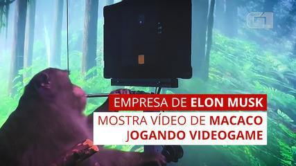 Elon Musk shows a video of a monkey playing video games with the mind