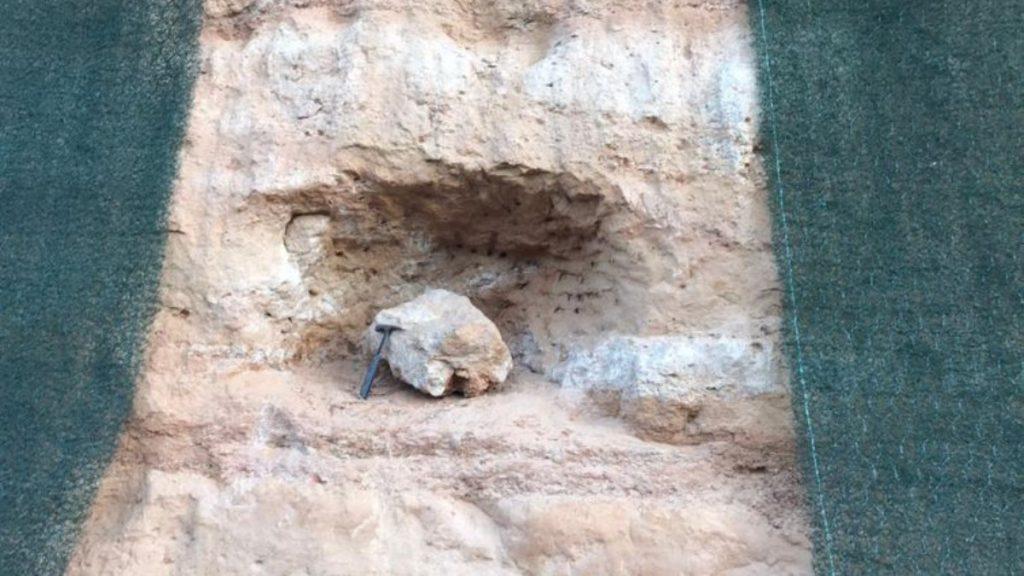 Dinosaur fossils were found in the interior of São Paulo.  see |  Sciences