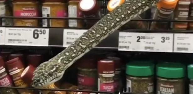 3 meter high snake surprises customers by appearing on the shelf;  Watch
