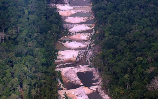 Contact with the forest threatens JBS and Marfrig in the UK