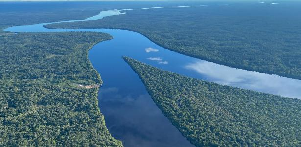 Global Commission says - 08/05/2021 that a large-scale environmental shift threatens the Amazon