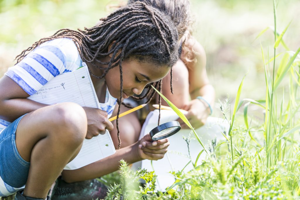 News: Effects of Citizen Science