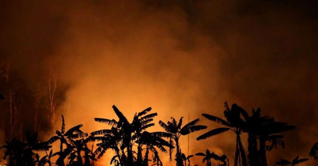 Entrepreneurs fear Brazil will become an ecological pariah