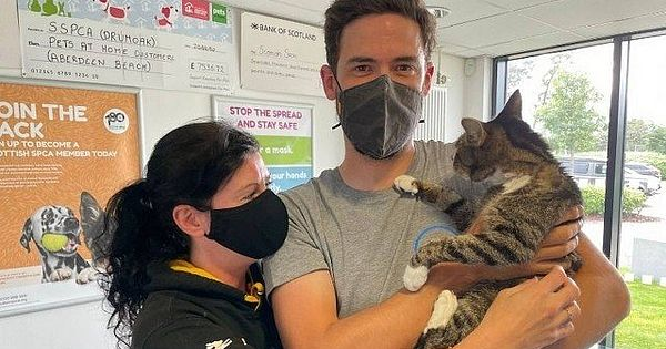 Owners find a pet cat that has been missing for ten years
