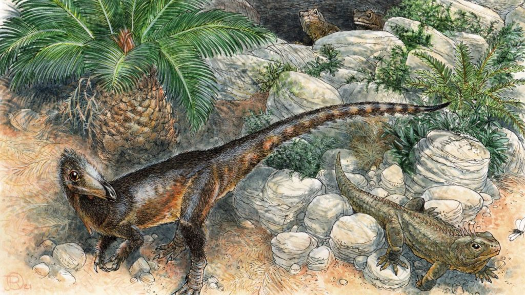The oldest carnivorous dinosaur in England, identified by ancient scientists